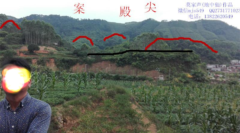 2.向(案).jpg
