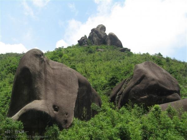 安溪护国岩 网友的照片分享>图片