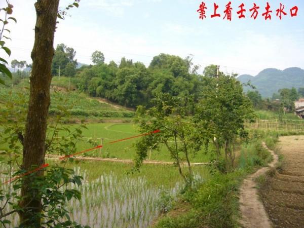 实例一则  刘石山 - 天使 - gzd19660319的博客